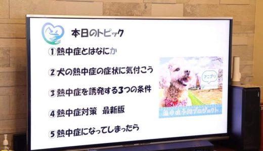 犬の熱中症対策セミナーに参加しました❗